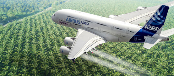 Photomontage : un avion Airbus en train de survoler une plantation de palmiers à huile