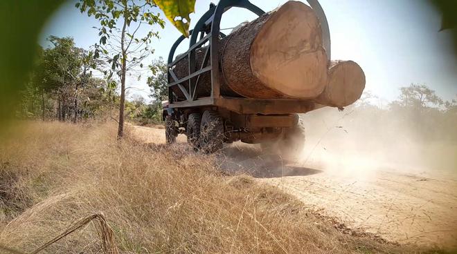 Camion de bûcheron au Cambodge