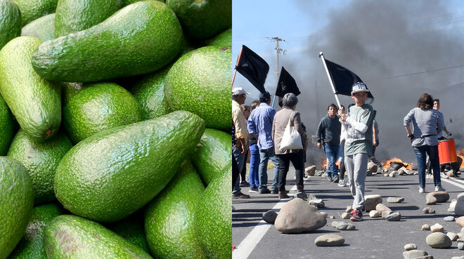 Photomontage: avocats (à gauche) - manifestation au Chili (droite)