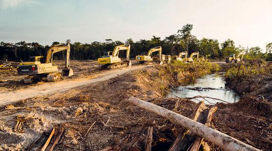 Des pelleteuses en file indienne pénètrent dans la forêt tropicale