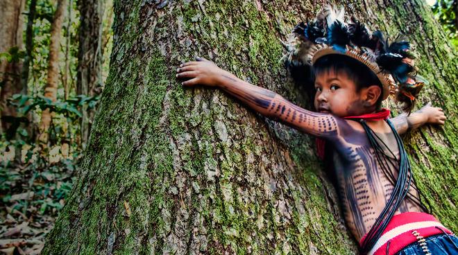 Un enfant du peuple Paiter Suruí étreint un gros tronc d'arbres avec ses bras. Sa tête tournée vers nous, il nous adresse und regard plein de détresse