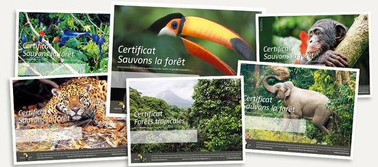 Certificats de dons à Sauvons la forêt