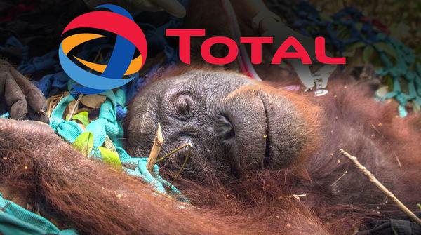Orang-outan agonisant avec le logo deTotal