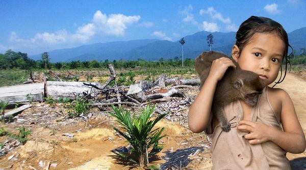 Une petite fille tient sur son épaule un singe devant le paysage désolant d'une forêt défrichée
