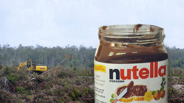 Photomontage avec un pot de Nutella en premier plan sur fond de forêt pluviale détruite par des bulldozers