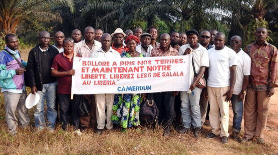 Au milieu d'une palmeraie, un groupe d'une vingtaine de paysans camerounais exhibe une banderole sur laquelle est écrit : « Bolloré a pris nos terres. Et maintenant notre liberté. »