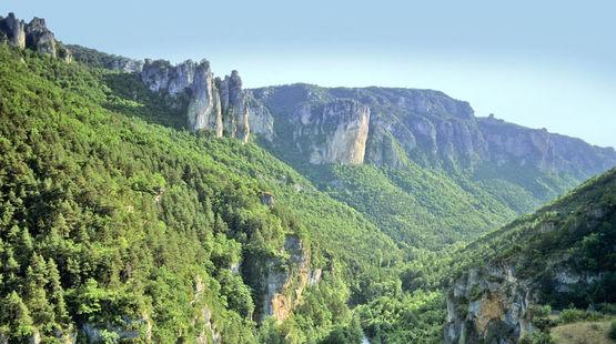 Vue aérienne sur une vallée et ses forêts majestueuse dans les Cévennes