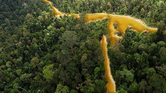 [Petition] Retrait du permis Limonade ! - or guyanais - permis de polluer Goldfluss-guyana-fr