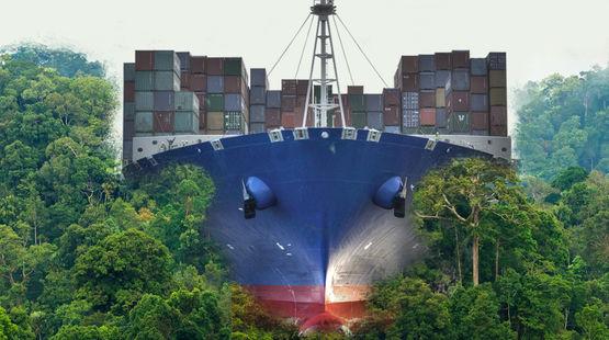 Photomontage : un porte conteneurs vue de face se dirige vers nous en pulvérisant la forêt tropicale